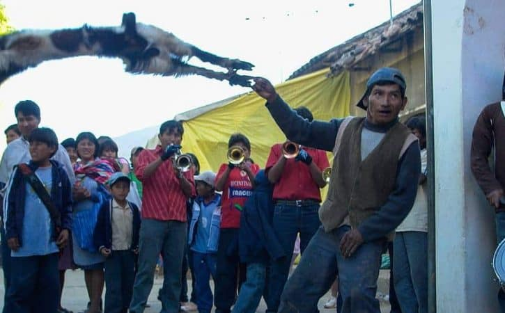 Hurling Sheep for Fun? A Festival in Bolivia