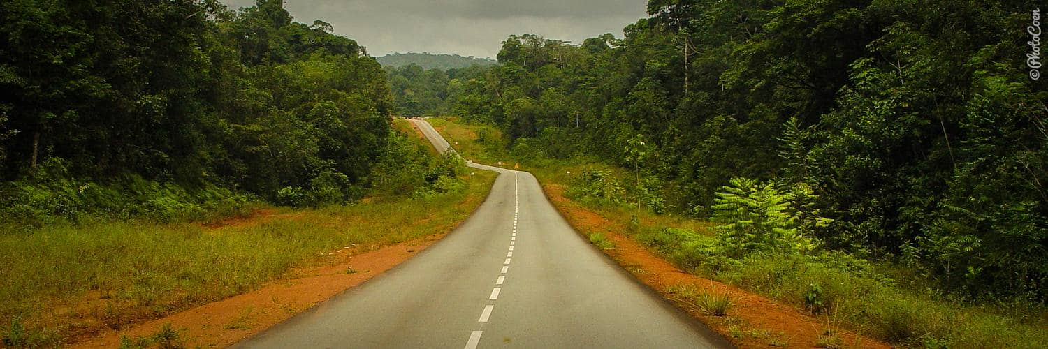 Travel overland in French Guiana; smooth asphalt