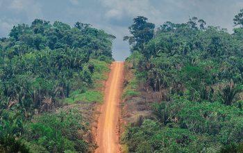 Driving The Transamazônica through Amazon Deforestation