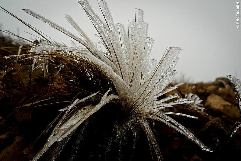 ice sculpture of nature in south bolivia