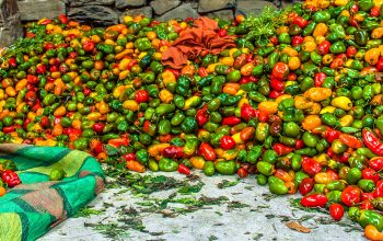 Peruvian Cuisine – One of the World's Best Foods?