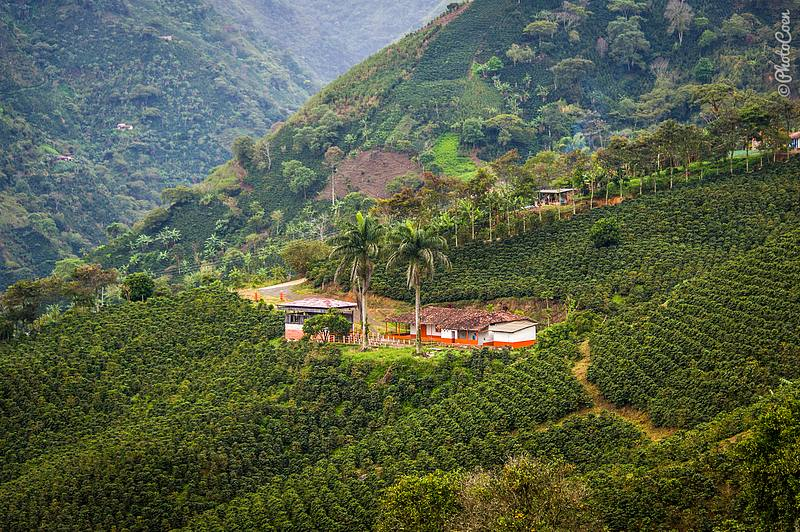 Taking Risks A Trip To Colombia S Choc 243 Region