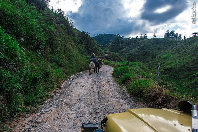 Driving in Colombia - guy on horseback