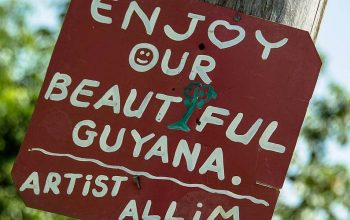 Guyana Travel Guide – Travel Information for your Road Trip
