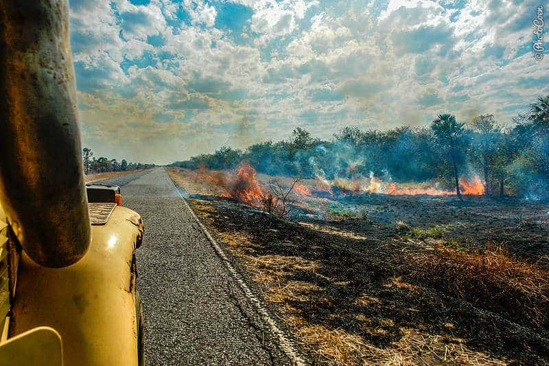 Driving the Trans-Chaco Highway, Paraguay (©photocoen)