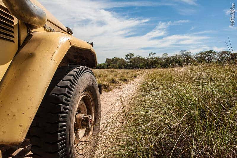 Driving sandy tracks is part of the Pantanal adventure.