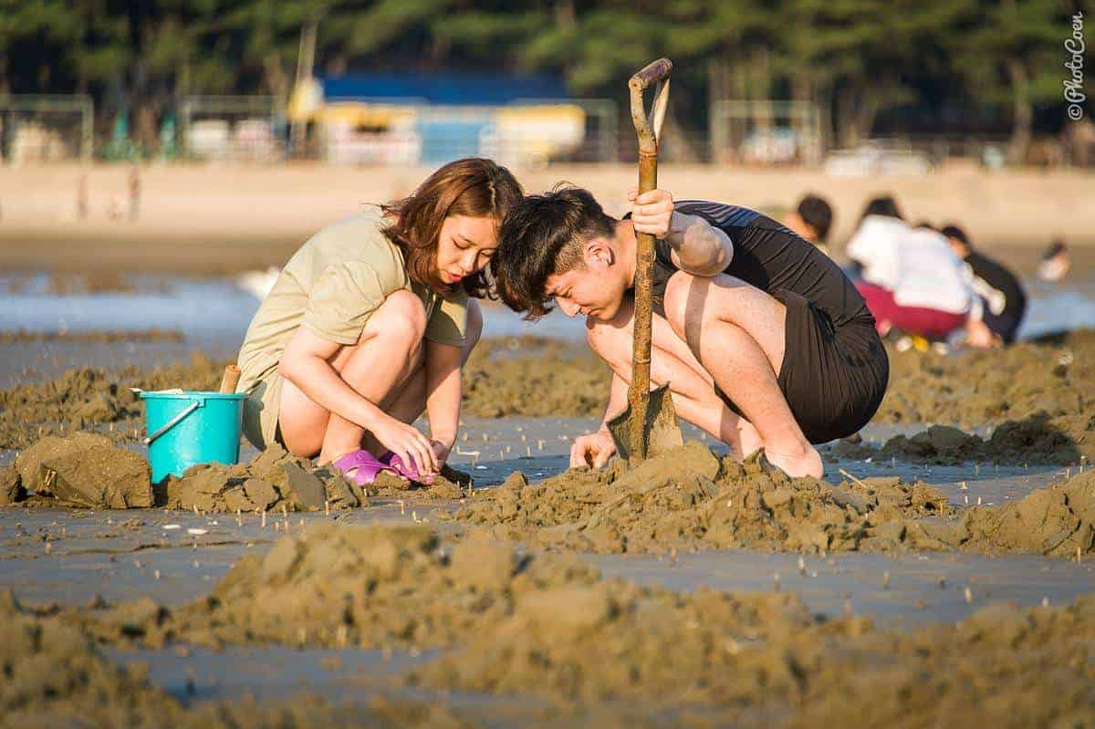 Beach Life: a young man and young woman are squatting on the beach searching for clams.