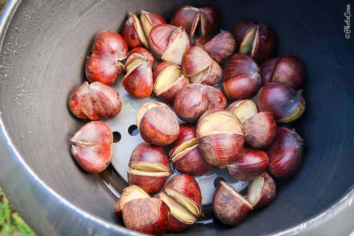 Chestnuts to be cooked in the pressure cooker
