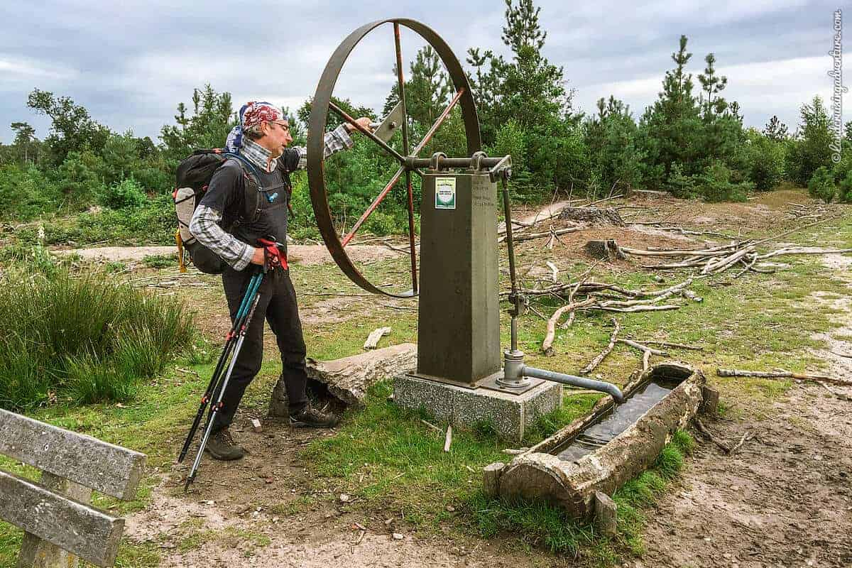Drinking water system for animals, Netherlands