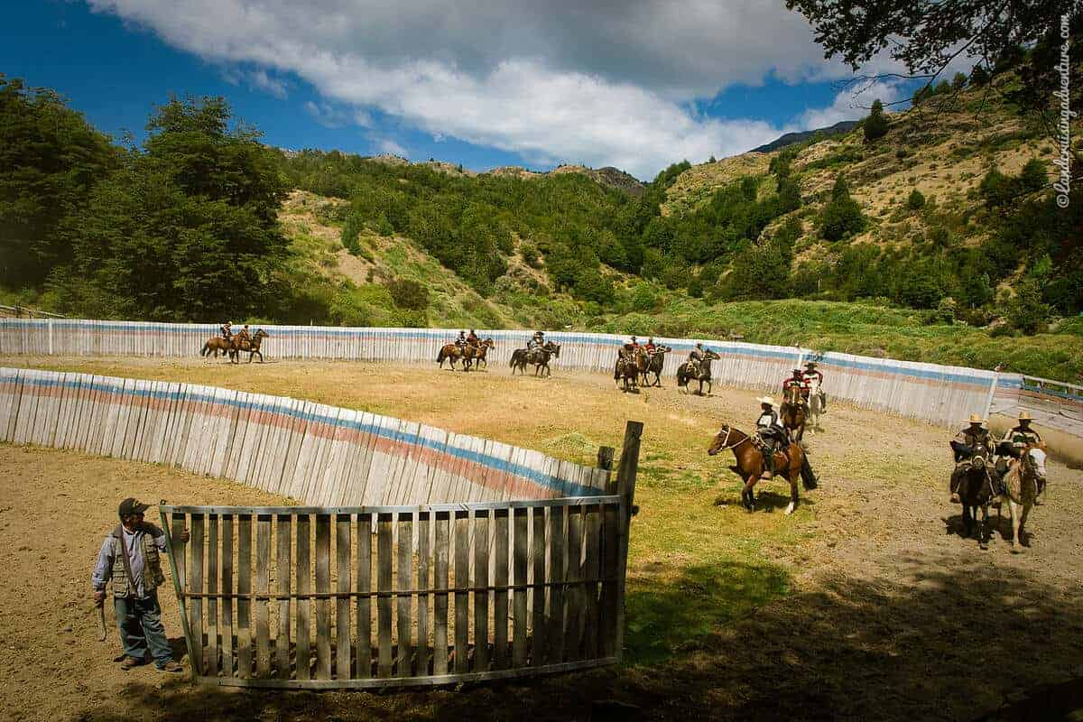 Rodeo in Patagonia, Chile